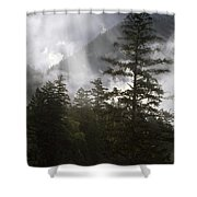 Siuslaw National Forest Shower Curtain