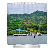 Six Cats Color Shower Curtain