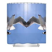 Six Heavenly Backlit Seagulls Flying Overhead In Blue Sky. Shower Curtain