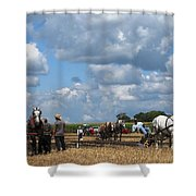 Six Horses Shower Curtain