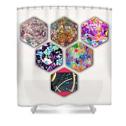 Six Paintings  Shower Curtain