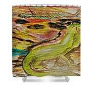Sixth Grade Iguana Shower Curtain