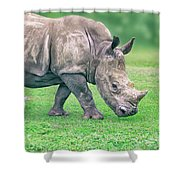 Size Doesn't Matter  Shower Curtain