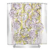 Size Exclusion Chromatography Shower Curtain