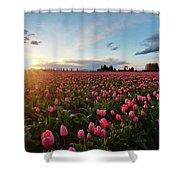 Skagit Sunset Field Shower Curtain