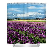 Skagit Tulip Storm Shower Curtain
