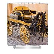 Skansen Carriage Shower Curtain