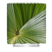 Skc 0690 Convergence Shower Curtain