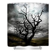 Skeletal Tree Shower Curtain by Meirion Matthias