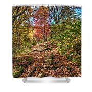 Skeleton Of Graveyard Fields Shower Curtain