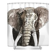 Sketch Elephant Shower Curtain