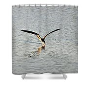Skimmer Skimming Shower Curtain