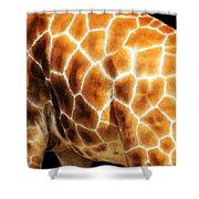 Skin Deep - Buy Giraffe Art Prints Shower Curtain