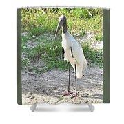Skinny Wood Stork Shower Curtain
