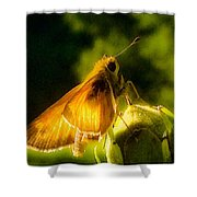 Skipper Butterfly With Sun Shine Shower Curtain