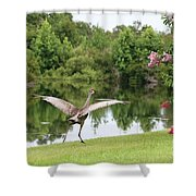 Skipping Sandhill Crane By Pond Shower Curtain
