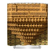 Skn 1323 Endearing Carvings Shower Curtain