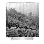 Skn 6521 Nature's Bounty B/w Shower Curtain