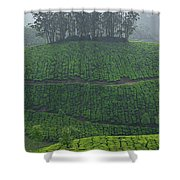 Skn 6550 From Tea's Perspective. Color Shower Curtain