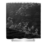 Skn 6707 Tree Parade. B/w Shower Curtain