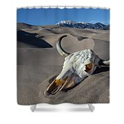 Skull At The Great Sand Dunes Shower Curtain