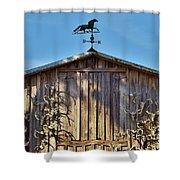 Skull Barn Shower Curtain