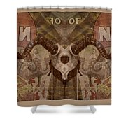 Skull Disproportion Shower Curtain