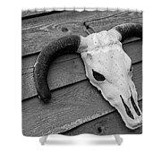 Skull In North Dakota  Shower Curtain