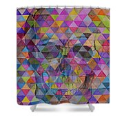Skull Triangle Shower Curtain
