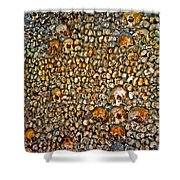 Skulls And Bones Under Paris Shower Curtain