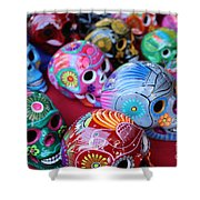 Skulls Day Of The Dead  Shower Curtain