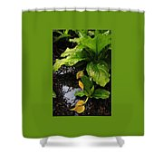Skunk Cabbage Beauty Shower Curtain