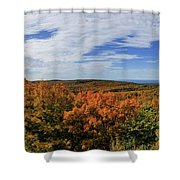 Sky And Trees Shower Curtain