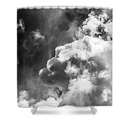 Sky Life Regal Shower Curtain