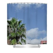 Sky Palm Shower Curtain