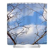 Look At The Blue Sky Shower Curtain