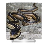 Skyline Drive Garter Shower Curtain