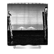 Skyway Day Shower Curtain