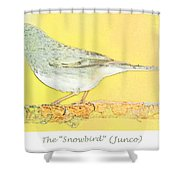 Slate Colored Junco The  Shower Curtain