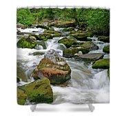 Slate Creek, Nez Perce National Forest, Idaho Shower Curtain