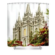 Slc Temple Angle Shower Curtain by La Rae  Roberts
