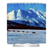 Sledding In Russia Shower Curtain