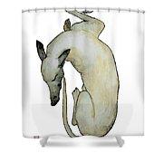 Sleep II Shower Curtain