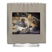 Sleeping Beauty,  Houston Zoo Shower Curtain