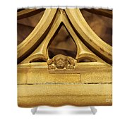 Sleeping Dog In Strasbourg Cathedral Shower Curtain