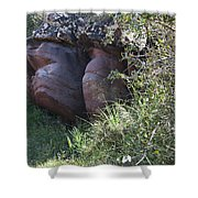 Sleeping In The Jungle - Stone Face In Forest Shower Curtain