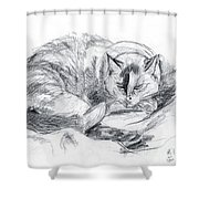 Sleeping Jago Shower Curtain