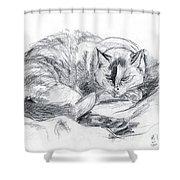 Sleeping Jago Shower Curtain