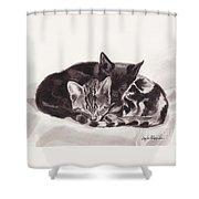 Sleeping Kittens Shower Curtain