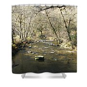 Sleepy Creek Shower Curtain